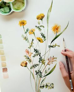 Watercolor Art Lessons, Watercolor Projects, Watercolor Plants, Floral Watercolor, Watercolor Pattern, Botanical Drawings, Botanical Art, Wildflower Drawing, Art Plastique