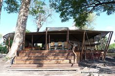 Linyati Bush Camp - Linyanti Safari - Picasa Web Albums Two Twin Beds, Flush Toilet, Comfortable Sofa, Albums, Gazebo, Safari, Tent, Outdoor Structures, Camping