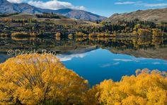Queenstown autumn, New Zealand New Zealand, Autumn, River, Explore, Outdoor, Ideas, Outdoors, Fall, Outdoor Games