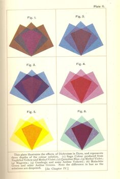 1900. The science of colour mixing; a manual intended for the use of dyers, calico printers and colour chemists, by David Paterson.
