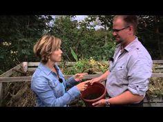 Den giftfrie hagen - YouTube