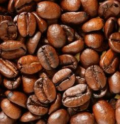 Choosing The Best Fresh Coffee