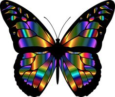 Stained Glass Butterfly Window Cling Suncatcher Wide Window Decal Glass Cling Glowing Chromatic Prismatic Color Light Reflective Ink by WindowClingsGalore on Etsy Glass Butterfly, Butterfly Painting, Butterfly Wallpaper, Monarch Butterfly, Rainbow Butterfly, Window Clings, Window Art, Art Papillon, Abstract Animal Art