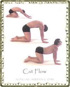 neck pain exercises