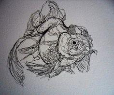 Quick Fish Studies