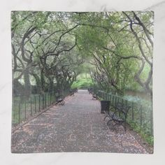 Conservatory Garden Central Park NYC Photography Trinket Trays - photography gifts diy custom unique special