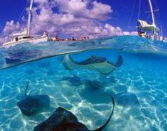Caribbean vakantie: Kaaiman eilanden vakantie individueel en veelzijdig