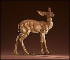 All Ears _ Bronze sculpture by Ken Rowe