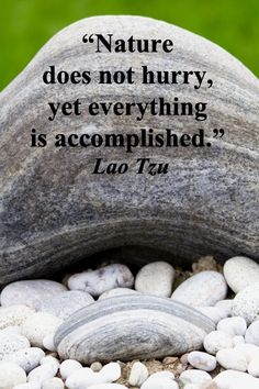 """Nature does not hurry, yet everything is accomplished."" – Lao Tzu – On image from Gampo Abbey, Nova Scotia, Canada, taken by Florence McGinn – Explore quotes of wisdom at http://www.examiner.com/article/wise-quotes-to-inspire-learning-and-springboard-action?cid=rss"