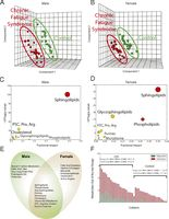 Metabolomics showed that chronic fatigue syndrome is a highly concerted hypometabolic response to environmental stress that traces to mitochondria and was similar to the classically studied developmental state of dauer.