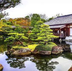 Breathtaking Traditional Japanese Garden! :) #JapaneseGardens