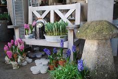 simple bench construction paradis express