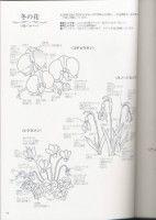 "Gallery.ru / simplehard - Альбом ""Flower garden"""