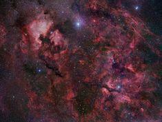NGC 7000 una nebulosa al norte de la constelación del Cisne