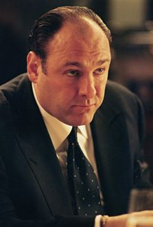 """""""If you can quote the rules, then you can obey them."""" -Tony Soprano (James Gandolfini), passed away in Italy at the age of a great character role Tony Soprano, People Of Interest, Great Tv Shows, Tv Guide, Best Tv, Celebrity Pictures, Gangsters, Favorite Tv Shows, People"""