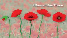 Acts of Remembrance - Social Media - Veterans Week - Get Involved - Remembrance - Veterans Affairs Canada Veterans Affairs, Remembrance Day, Social Justice, Thought Provoking, Social Media, Social Studies, Acting, Canada, Education