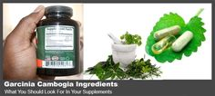 One of the dangers of weight loss products is that some companies may compromise on the quality of their products by adding artificial ingredients or binders. Garcinia (gambooge) supplements is not…