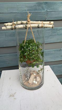 Succulents Garden, Garden Pots, Indoor Garden, Indoor Plants, Decoration Plante, Deco Floral, Plant Decor, Garden Projects, Diy Projects