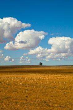Nullarbor Plain, South Australia.