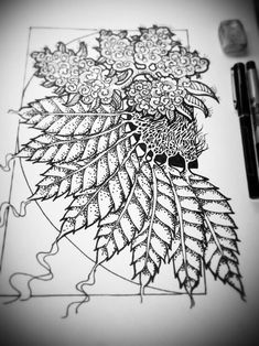 free adult coloring pages weed - AOL Image Search Results