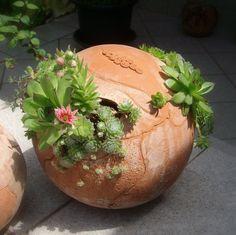 """Little sphere terracotta garden by TikaCeramics on Etsy, $60   7.1"""" diameter"""