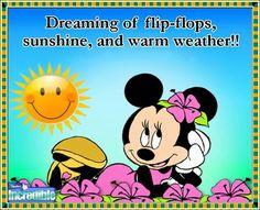♥ flip flops, sunshine, and warm weather !!