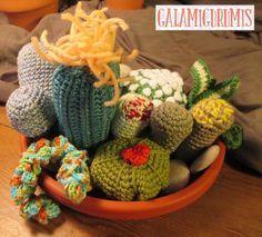 Cactus fácil, fácil: Más patrones