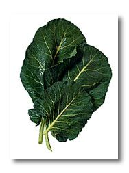 Collard (also known as tree-cabbage or nonheading cabbage), is a cool-season vegetable green that is rich in vitamins and minerals. It grows better in warm weather and can tolerate more cold weather in the late fall than any other member of the cabbage family