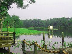 Clarks Fish Camp on Julington Creek (Jacksonville, Florida).... love this place!!!
