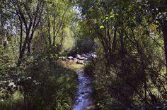 Сельская речка
