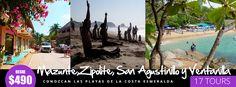 Costa, Tours, Painting, Crocodiles, Turtles, Oaxaca, Paintings, Draw, Drawings