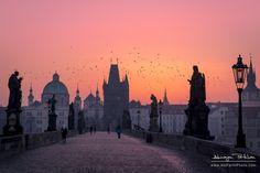 Charles Bridge, Prague by Abinayan Parthiban on 500px
