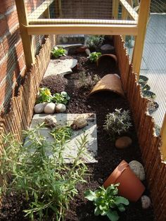 tortoise dream house. Monty and Cletus would love this! Someday when we have a yard...