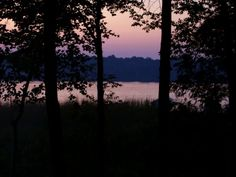 Serene Site 15 ~ Bear Lake Campground in Manawa, WI Stuff To Do, Things To Do, Purple Cat, Cat Art, Wisconsin, Serenity, Places Ive Been, To Go, Camping