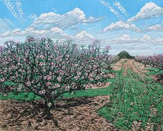 Blossom in the Apple Orchard