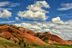 The Red Hills of Bridger-Teton National Forest....about ten miles east of Kelly, Wyoming on a bumpy gravel road.