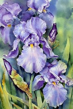 Oil painting Flowers art i cafieri oil on canvas lips oil painting long painting canvas feather canvas wall art Long Painting, Iris Painting, Oil Painting Flowers, China Painting, Watercolour Painting, Watercolor Flowers, Painting & Drawing, Watercolours, Acrylic Flowers