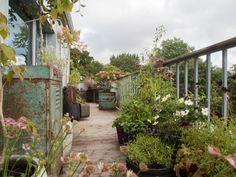 krukkehagen-1 Arch, Home And Garden, Outdoor Structures, Plants, Gardens, Patio, Longbow, Outdoor Gardens, Plant
