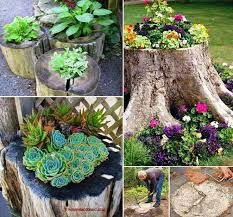 Billedresultat for creative uses for old tree stumps in the ground