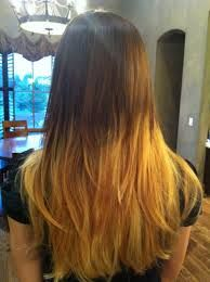 Ombre Gone Wrong Lol Bristin Beauty In 2019 Ombre Hair Hair Ombre