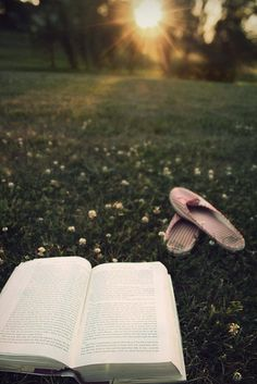 This looks like a beautiful place to plop down with a good book. :]