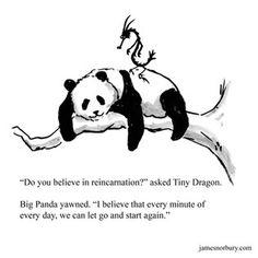 Big Panda, Bored Panda, Panda Art, Dragon Quotes, Zen, Dragon Comic, Tiny Dragon, Self Acceptance, Human Emotions