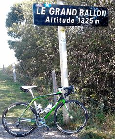Kermit, Alsace, Bergen, Touring, Lavender, Bike, Italy, Adventure, Bicycle