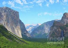 YOSEMITE SEA OF PINE by Todd L Thomas. Original painting available direct from artist $1950, Paypal DreamscapeCreative@Gmail.com with painting title...Prints also available at www.ToddLThomas.net
