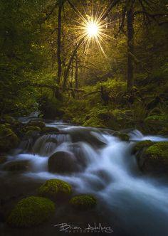 Stream of Dreams (Oregon) by Brian Adelberg / 500px