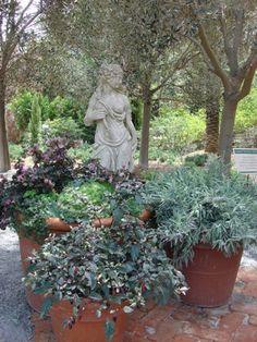 Mediterranean container garden. by the crawl space access door.