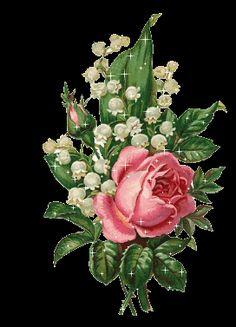 fleurs fonds écrans images gifs