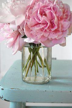 Pink & aqua by sososimps Fresh Flowers, Pretty In Pink, Pink Flowers, Beautiful Flowers, Flower Quotes, Pink Peonies, Flower Power, Planting Flowers, Floral Arrangements