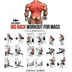 Big Back Workout step by step tutorial. back day. back workout. Gym Workout Chart, Step Workout, Gym Workout Tips, Weight Training Workouts, Fitness Workouts, At Home Workouts, Workout Plans, Chest Workouts, Back Workouts For Men
