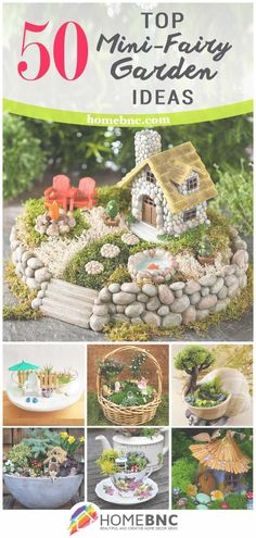 18 Awesome Magical And Best Plants Diy Fairy Garden Ideas http://zoladecor.com/magical-and-best-plants-diy-fairy-garden-ideas